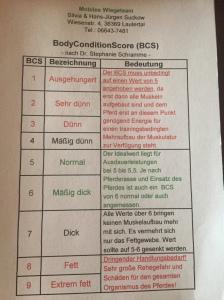 BCS Tabelle